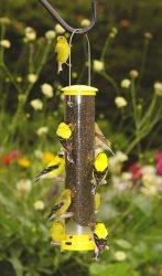 Quick-Clean Finch Feeder